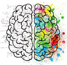 illustration of 2 sides of a brain